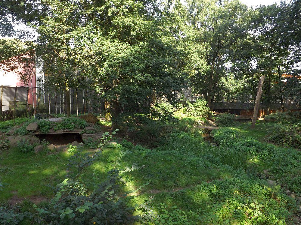 Tigeranlage (Ouwehands Dierenpark)