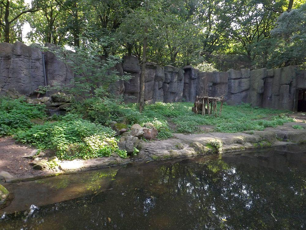 Wasserschweinanlage (Ouwehands Dierenpark)