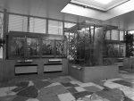Exotarium (Zoo Frankfurt)