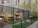 Außenanlage für Rhesusaffen (Tierpark Gotha)