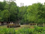 Alpakawiese (Tierpark Hellabrunn)