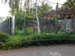 Bärenschaufenster (Tierpark Berlin)