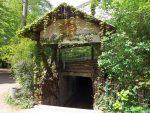 Löwenanlage, Eingang (Tierpark Eberswalde)