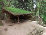 Rentieranlage (Bayerwald-Tierpark Lohberg)