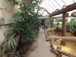 Schildkrötenanlage (Zoo Antwerpen)