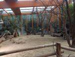 Schildkrötenhaus (Zoo Amersfoort)