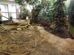 Anlage für Komodowarane (Zoo Antwerpen)