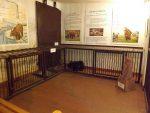 Zoomuseum (Tierpark Eberswalde)