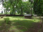 Damhirschanlage (Tierpark Eilenburg)