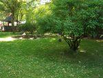 Vogelpark Heppenheim