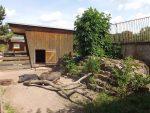 Minischweinanlage (Heimattiergarten Strehla)