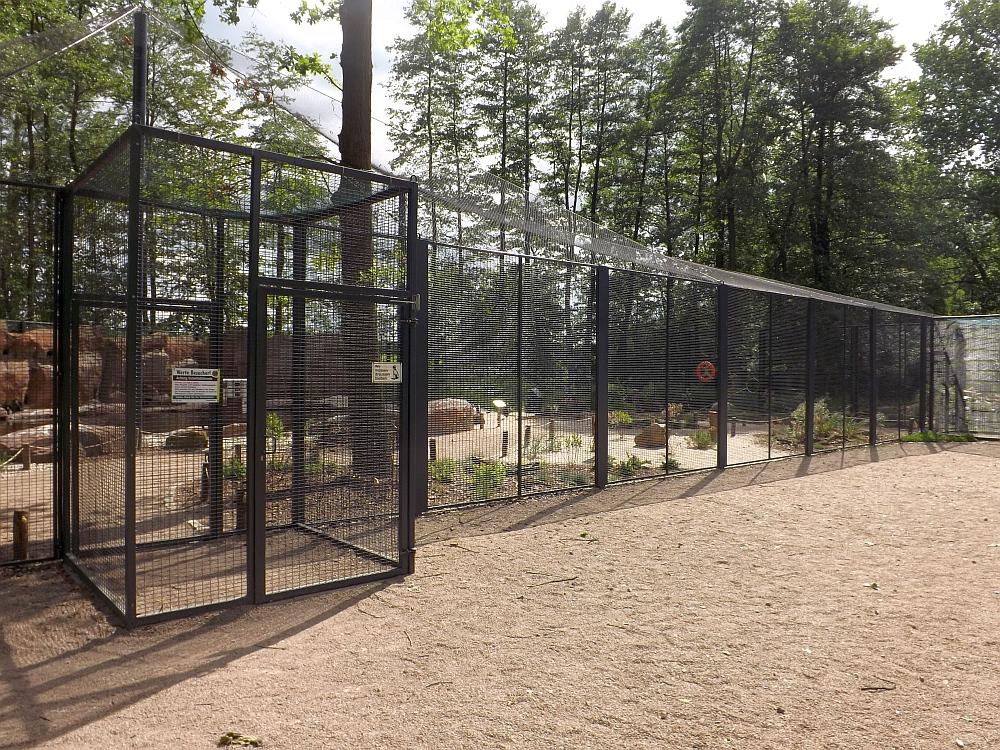 Pinguinland Tierpark Limbach Oberfrohna Der Beutelwolf Blog