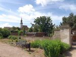 Heimattiergarten Strehla mit Stadtkirche im Hintergrund