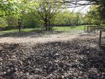 Wildschweinanlage (Wildpark Poing)