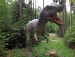 Albertosaurus sarcophagus (Dinopark Altmühltal)