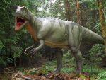 Allosaurus fragilis (Dinopark Altmühltal)