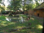 Ameisenbärenanlage (Zoo Planckendael)