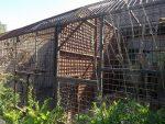 Außenanlagen für Pavian und Schimpansen (Zoo Dvorec)