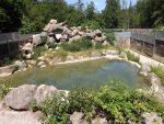 Braubärenanlage (Tiergarten Haag)