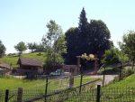 Wildpark Buchenberg