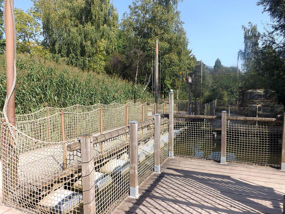 Crocodileriver (Zoo Planckendael)
