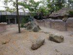 Erdmännchenanlage (Zoo Rotterdam)