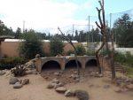 Mantelpaviananlage (Zoo Amersfoort)