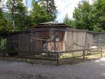 Rabenkrähenvolieren (Cumberland-Wildpark Grünau)