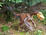 Velociraptor mongoliensis (Dinopark Altmühltal)