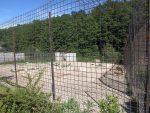 Wolfsanlage (Zoo Dvorec)