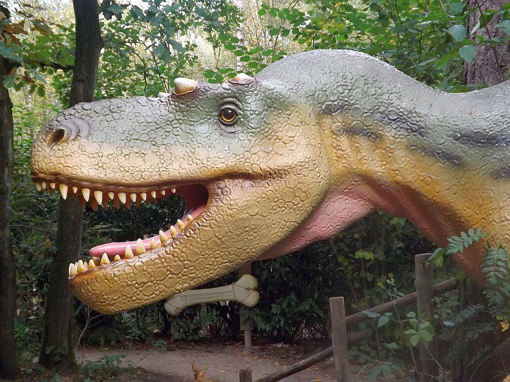 Albertosaurus (Zoo Amersfoort)