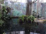 Alligatorenanlage (Zoo Leipzig)