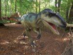 Allosaurus (Zoo Amersfoort)
