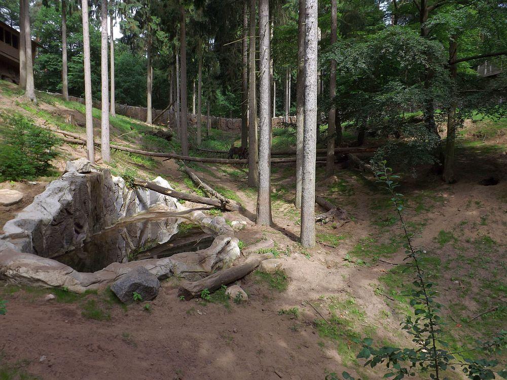 Bärenanlage (Wildpark Schwarze Berge)
