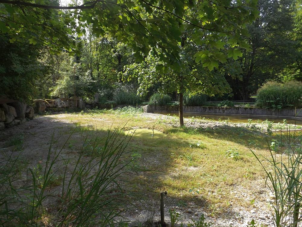 Bartschweinanlage (Tierpark Hellabrunn)
