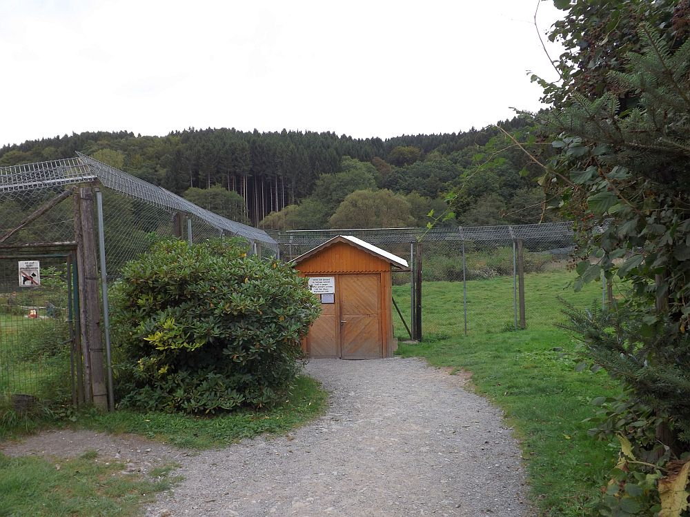 Berberaffenanlage (Affen- und Vogelpark Reichshof-Eckenhagen)