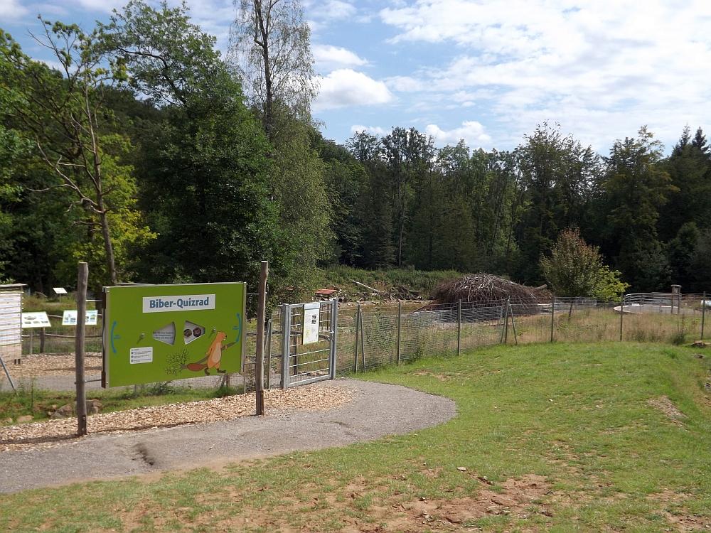 Biberanlage (Wildpark Klaushof)
