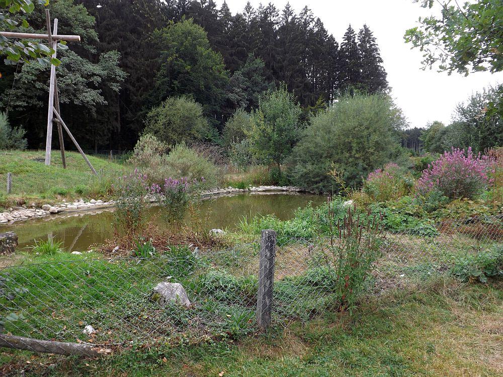 Bergtierpark Blindham