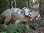 Centrosaurus (Zoo Amersfoort)