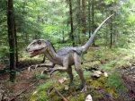 Deinonychus antirrhopus (Dinopark Altmühltal)
