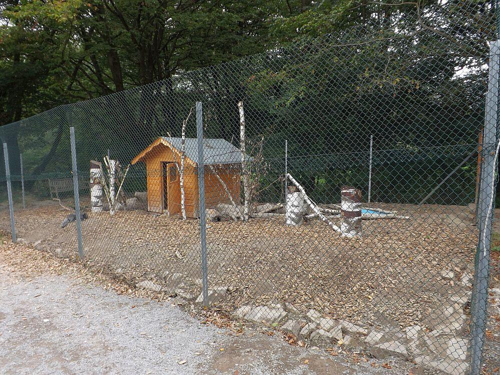 Eisfuchsanlage (Affen- und Vogelpark Reichshof-Eckenhagen)