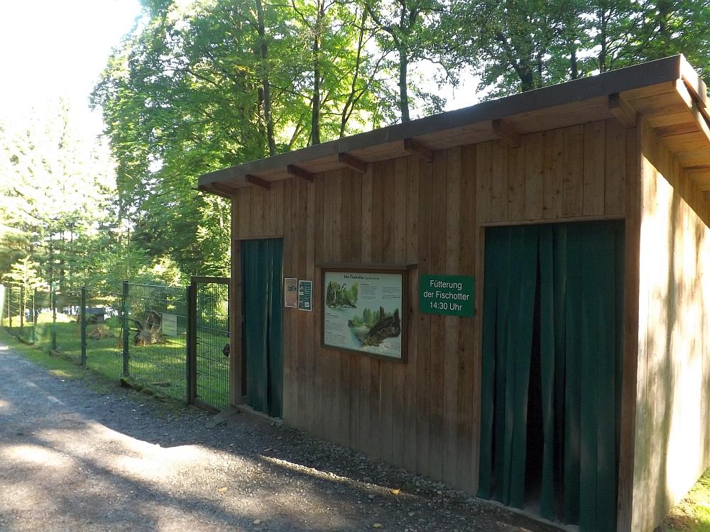 Fischotteranlage (Wildpark Gersfeld)