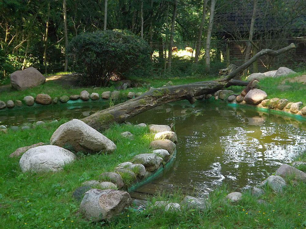Fischotteranlage (Wildpark Schwarze Berge)
