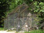 Kolkrabenvoliere (Wildpark Cumberland)