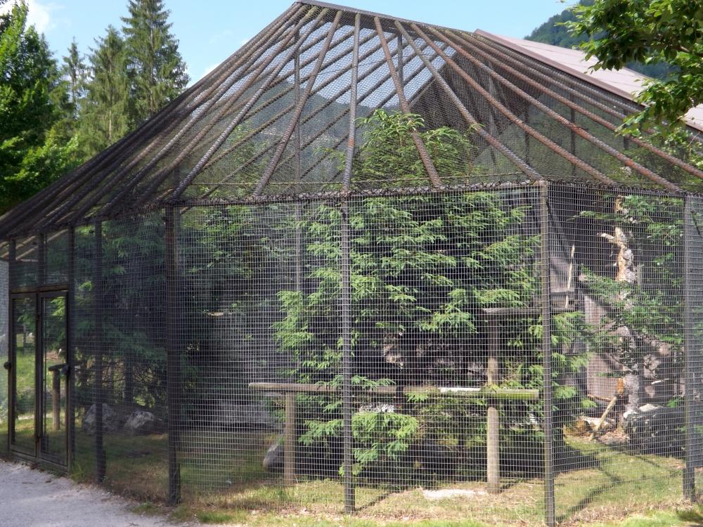 Schneeeulen-Voliere (Wildpark Cumberland)
