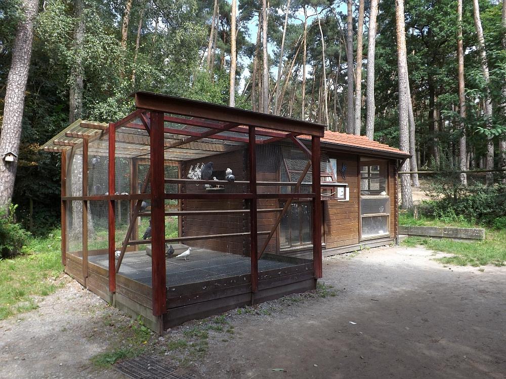 Alte Taubenvoliere (Tierpark Sommerhausen)