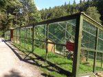 Wildkatzenanlage (Wildpark Gersfeld)
