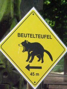 Hinweis auf Beutelteufel (Zoo Duisburg)