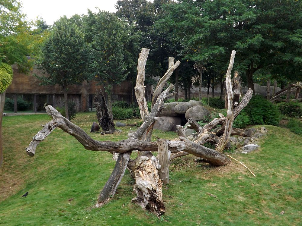 Känguruanlage (Zoo Rotterdam)