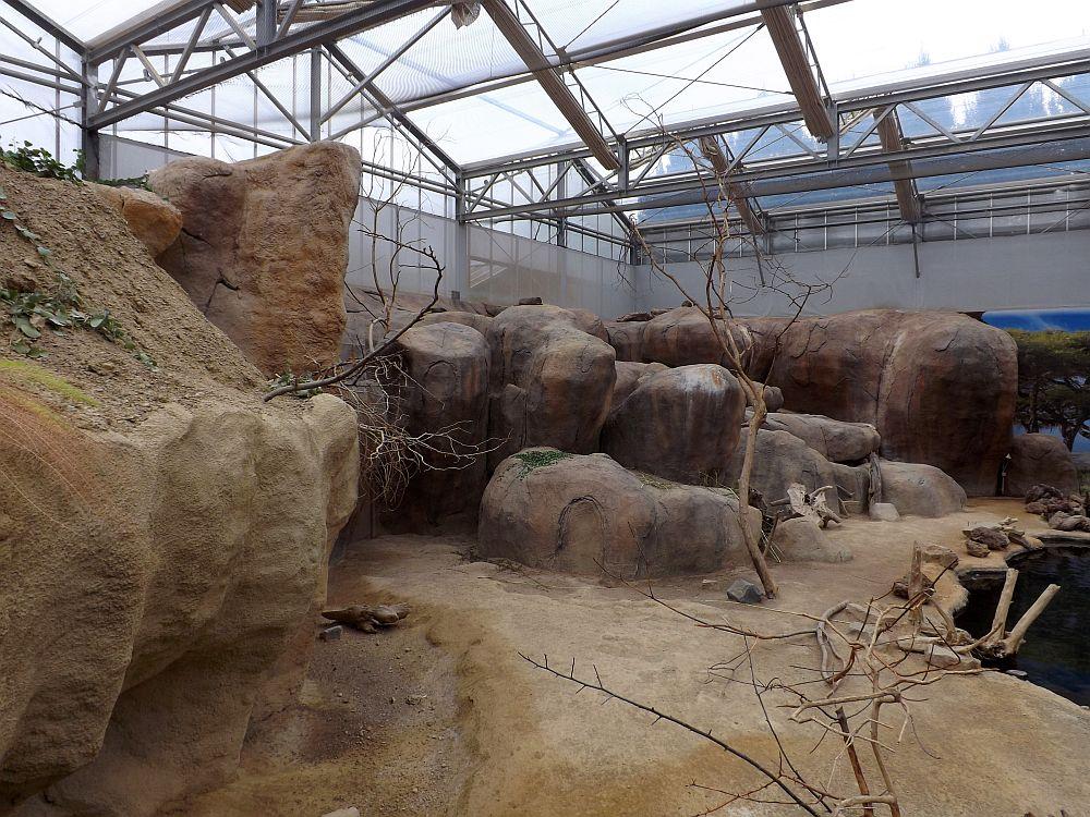 Klippschlieferanlage (Zoo Rotterdam)
